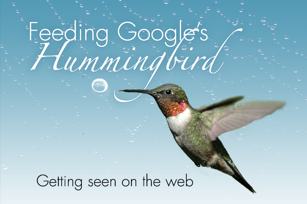 feeding-googles-hummingbird